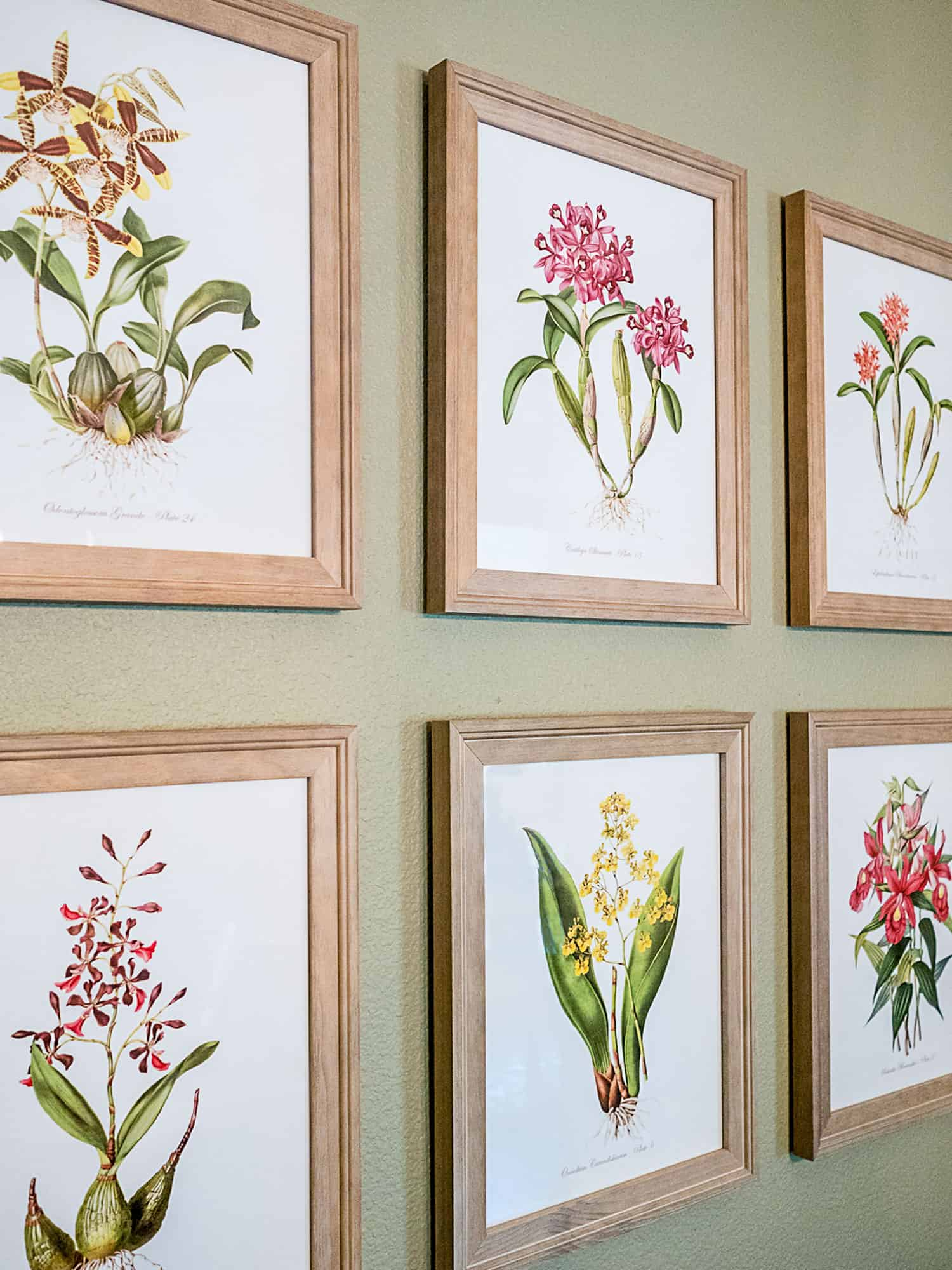 Set of six botanical prints with spring flowers as DIY wall decor
