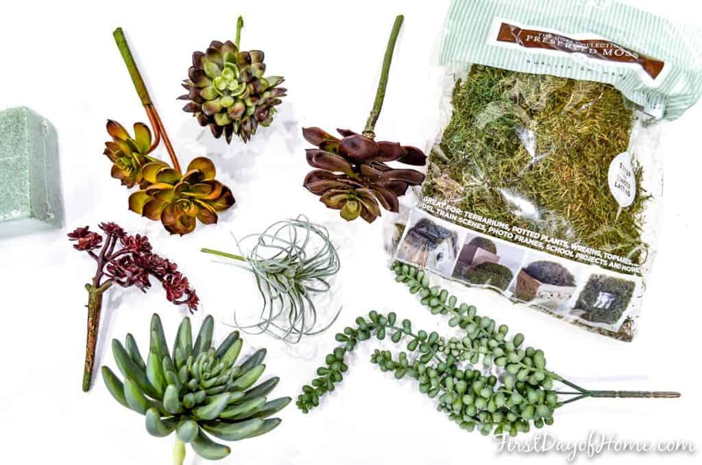 how to arrange succulents using floral supplies