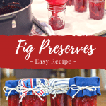 Easy Old Fashioned Fig Preserves Recipe