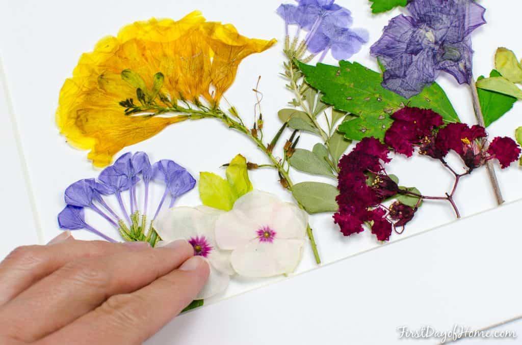 Microwave DIY pressed flower wall art tutorial flowers
