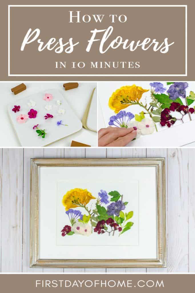 Microwave DIY pressed flower wall art easy tutorial