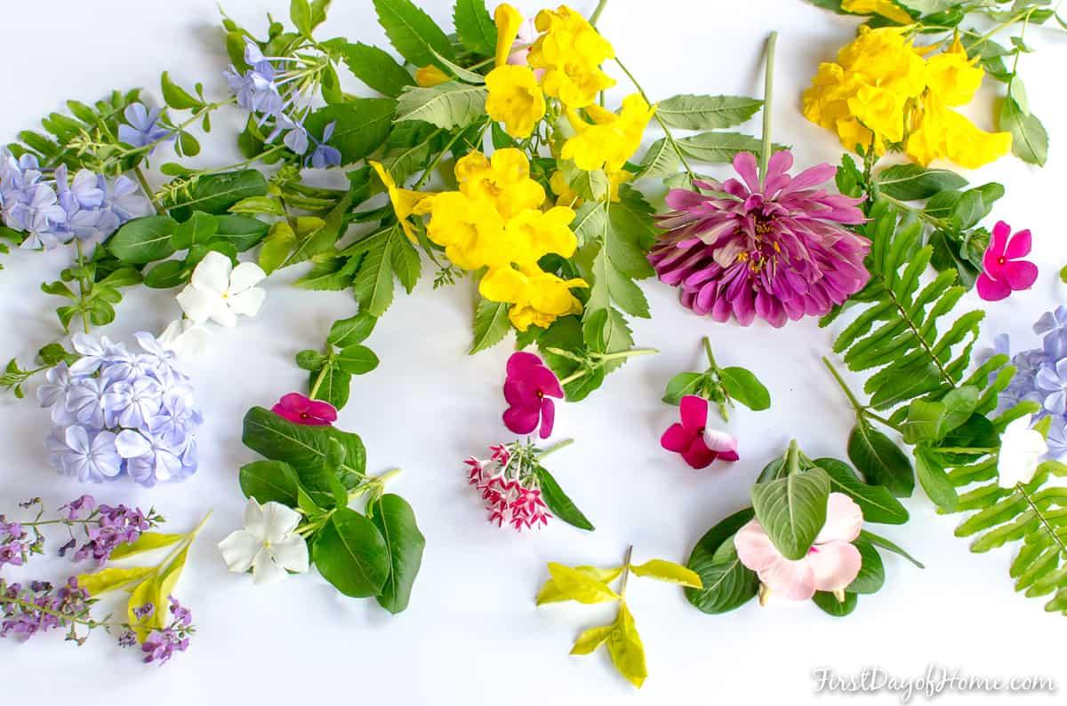 Microwave DIY pressed flower wall art flowers