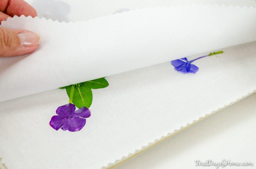 Pressing flowers in microwave for DIY pressed flower wall art