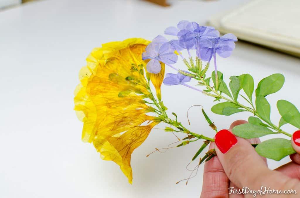 Finished DIY pressed flower wall art specimen