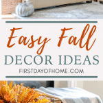 Fall Decor ideas for the living room and dining rooms using pumpkins, throw pillos and other decor accents