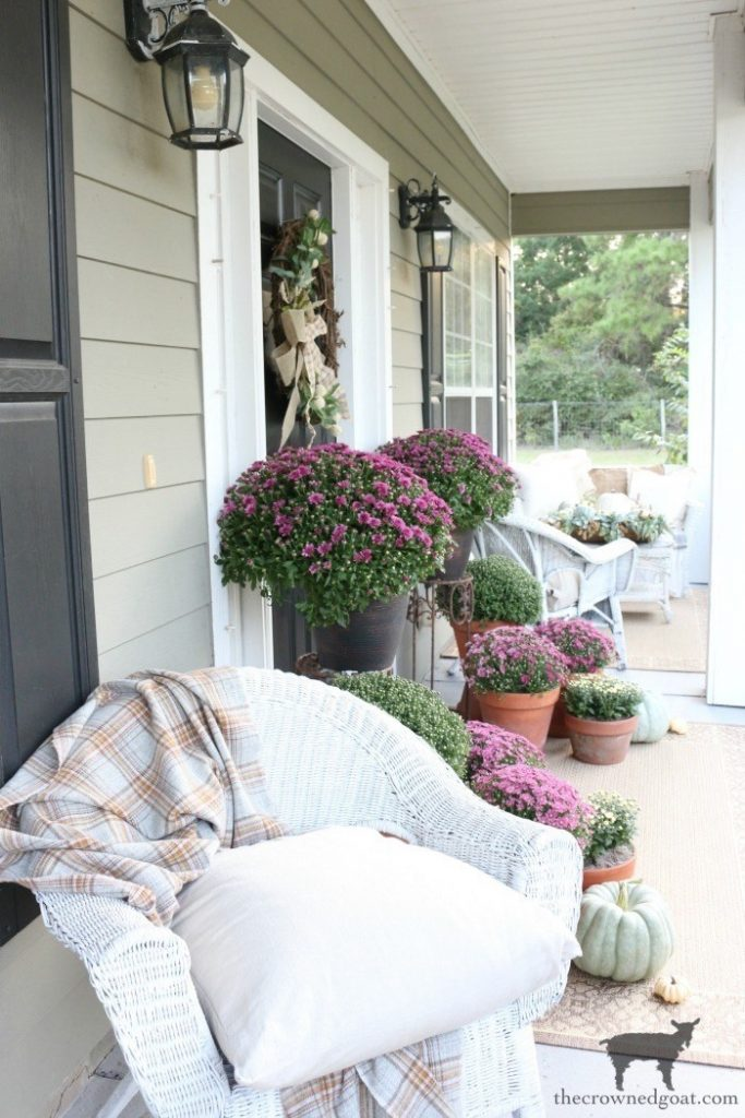 Fall porch decor with purple mums
