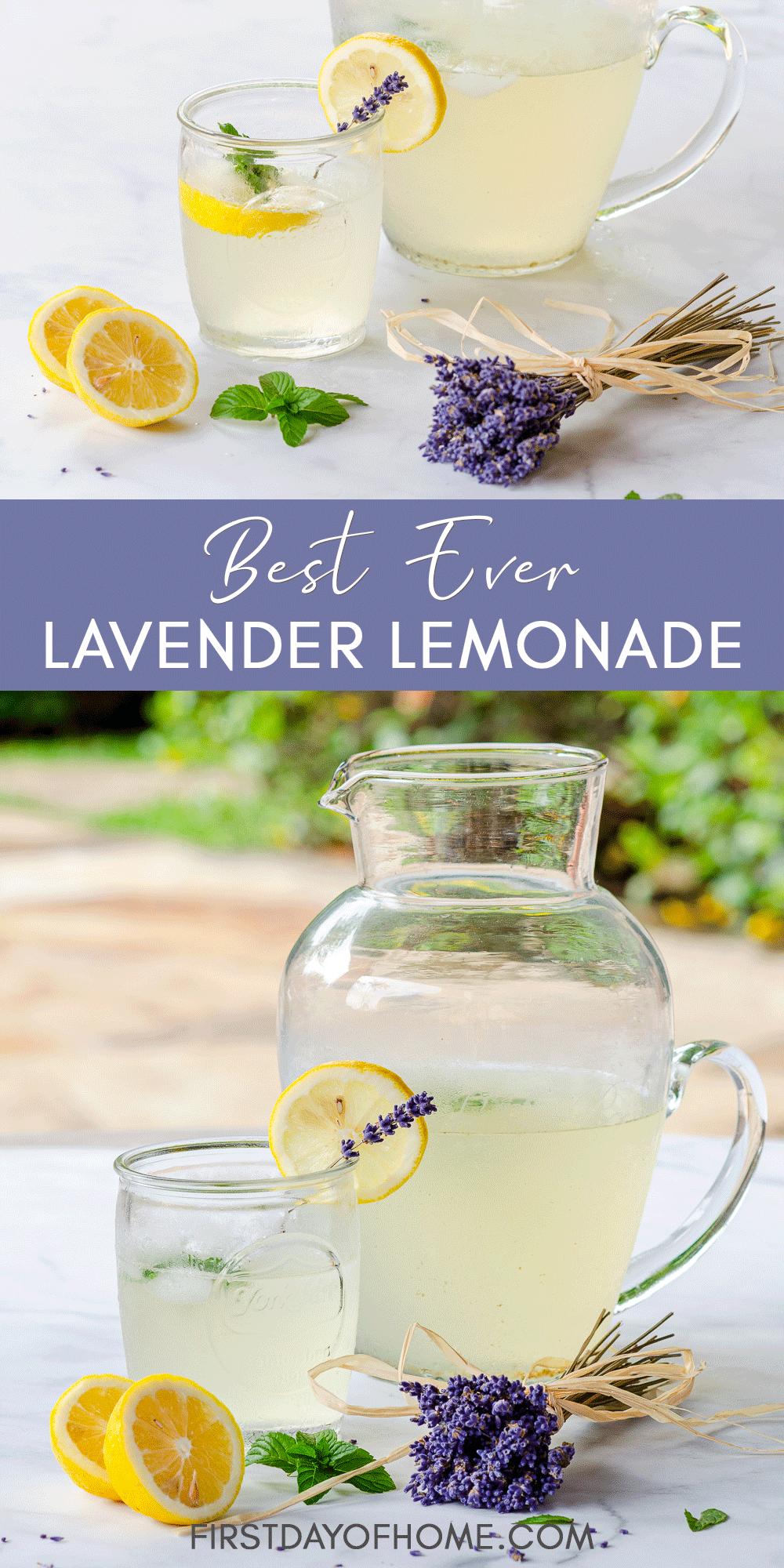 Lavender lemonade served in a pitcher with garnish of dried lavender buds, lemon slices and mint