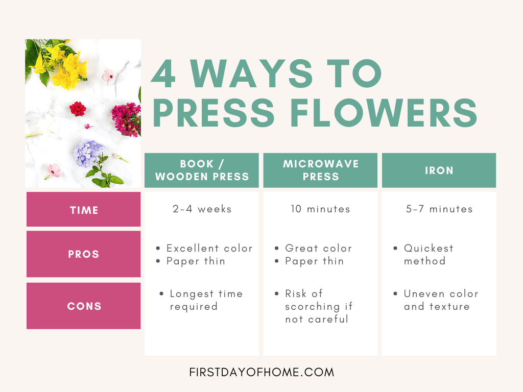 Four ways to press flowers with pros and cons