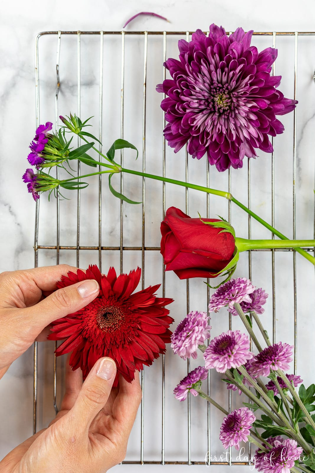 Preparing flowers to dry in the oven on a baking rack