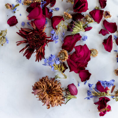 Dried flowers from floral bouquet after drying in oven