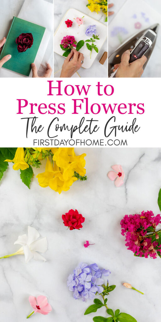 Guide to pressing flowers with four different methods and examples