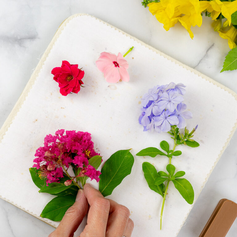 Fresh flowers, including plumbago, roses, vincas and crepe myrtle blossoms, before pressing in microwave with the Microfleur flower press