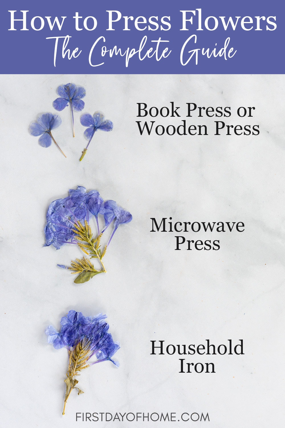 Comparison of four methods of pressing flowers
