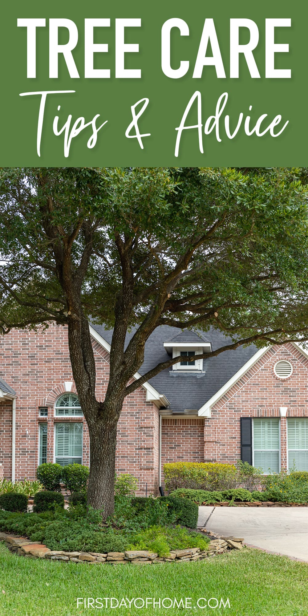 """Tree in front yard with house in background - pin that reads """"Tree Care Tips & Advice"""""""
