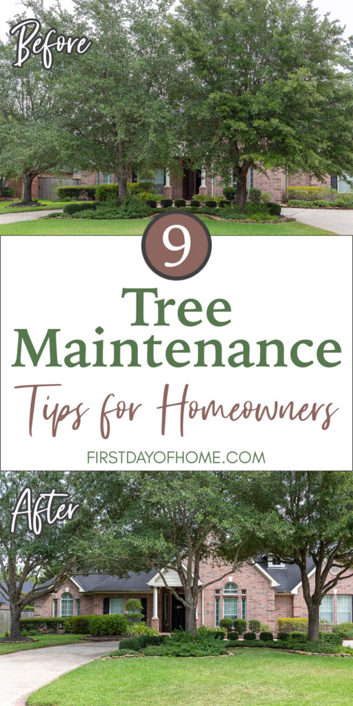 """Pinterest pin reading """"9 Tree Maintenance Tips for Homeowners"""" with a before and after picture of pruning trees"""