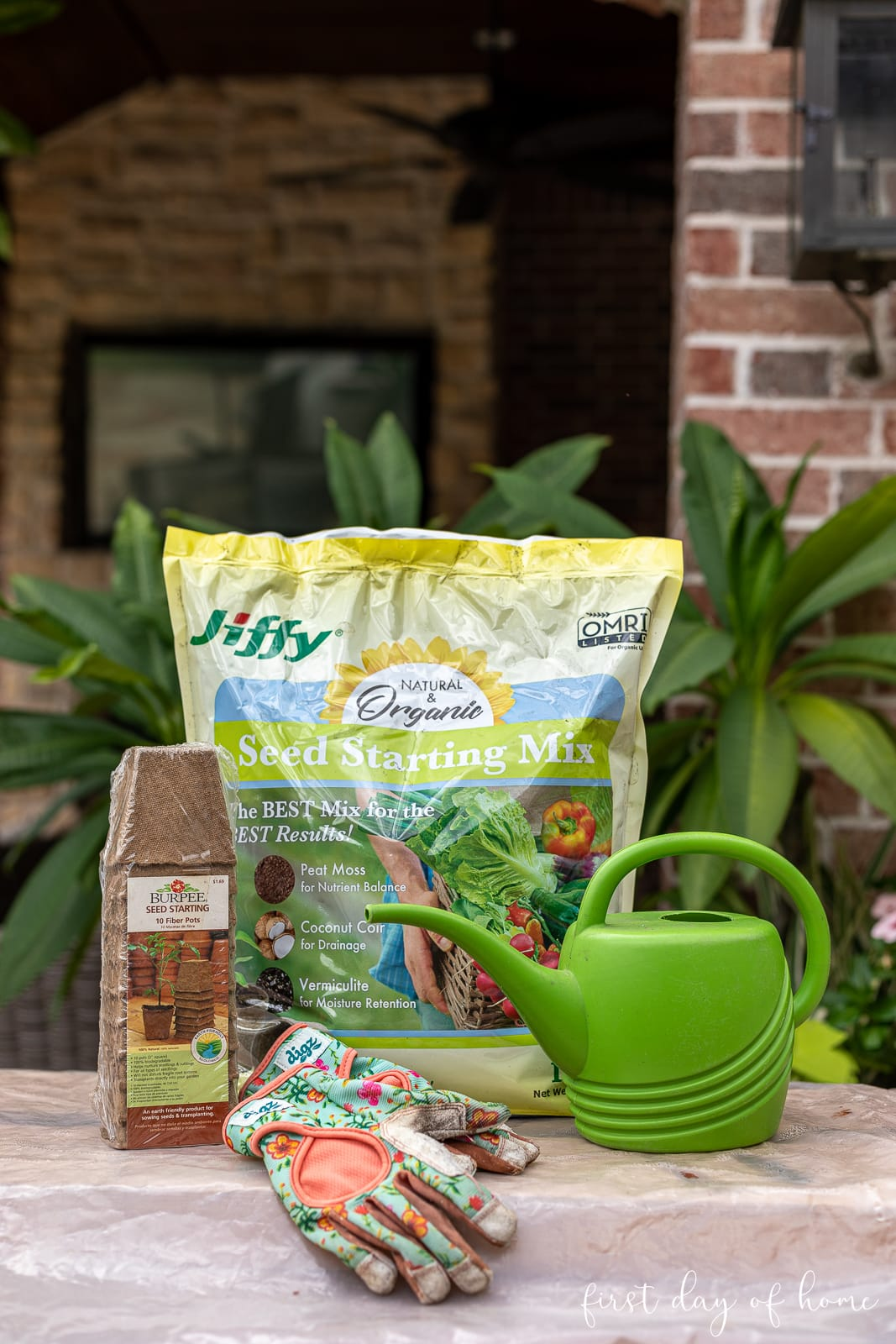 Vegetable seed starter kit with gardening tools