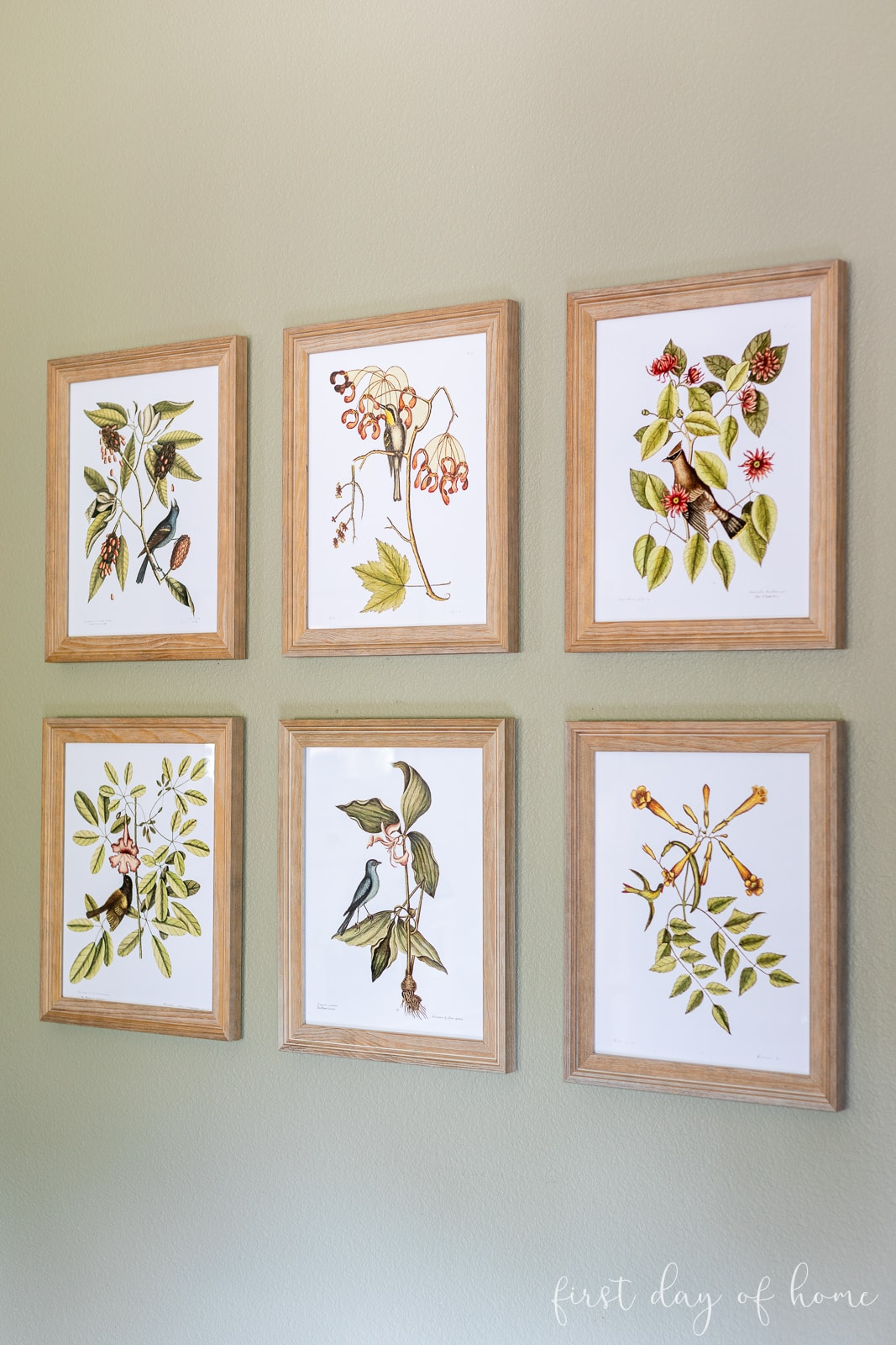 DIY wall art with fall botanical prints of fall stems with various birds