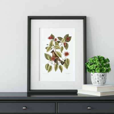 Fall botanical print sitting on desk with plant and books