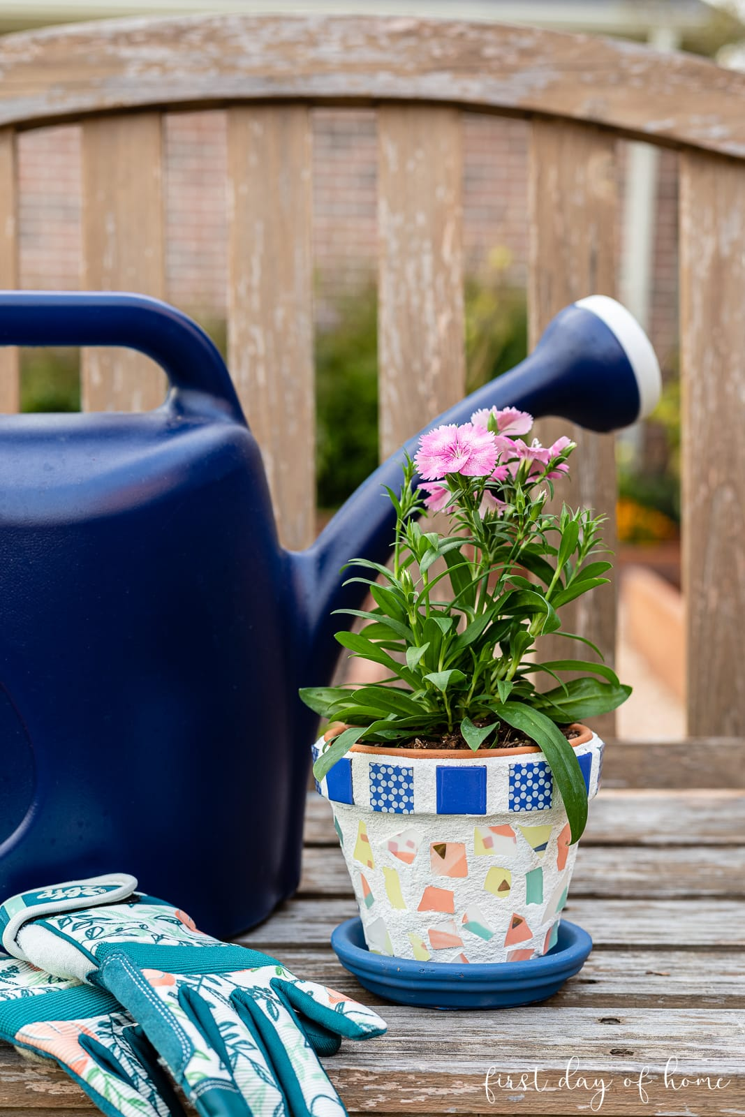 Mosaic flower pot with watering can and gardening gloves on wooden bench