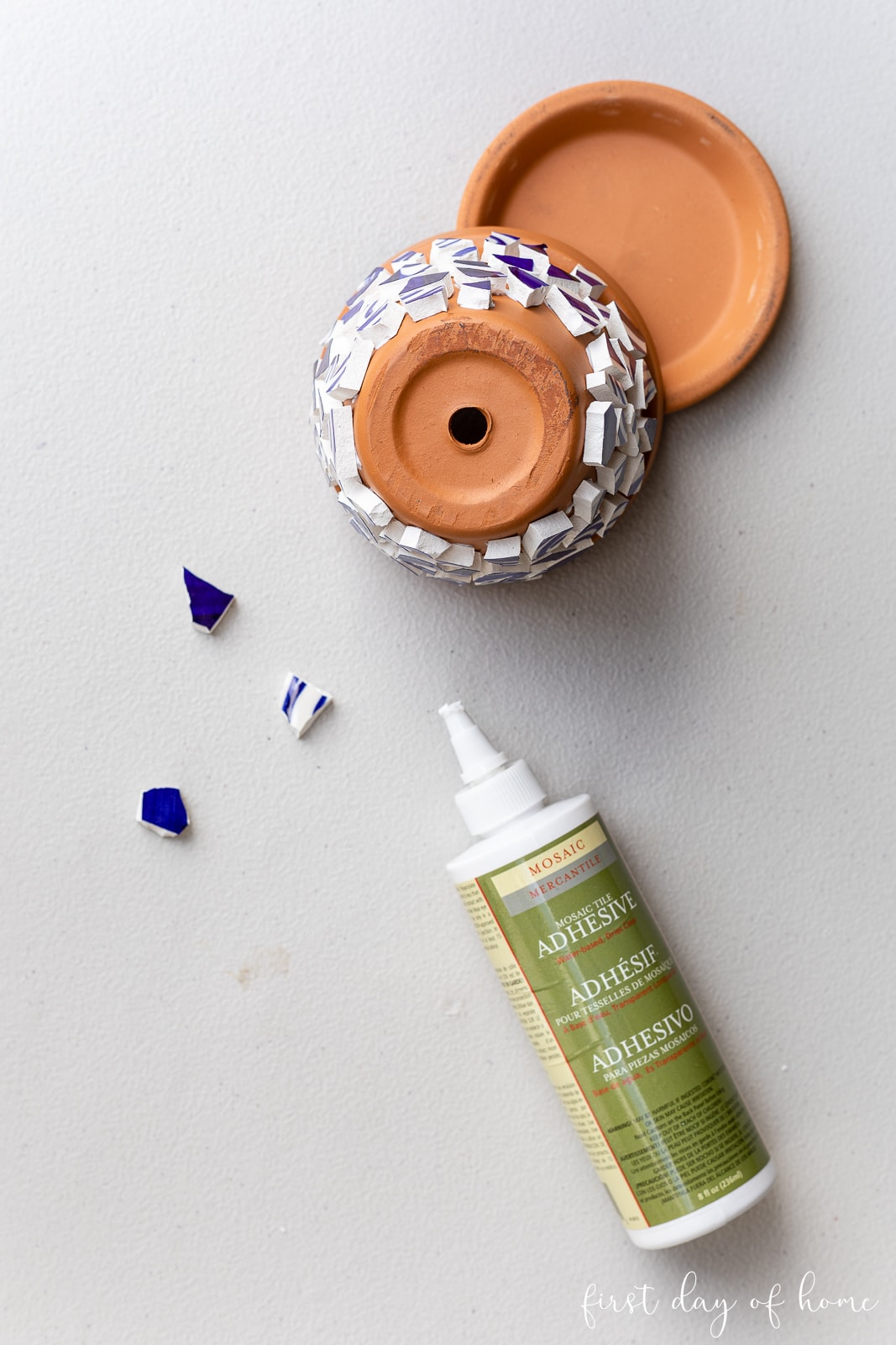 Tile adhesive and mosaic tile pieces with with terracotta pot