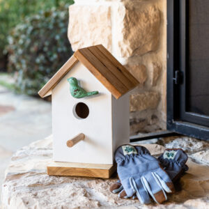 DIY Birdhouse Plans: Easy Tutorial for Beginners