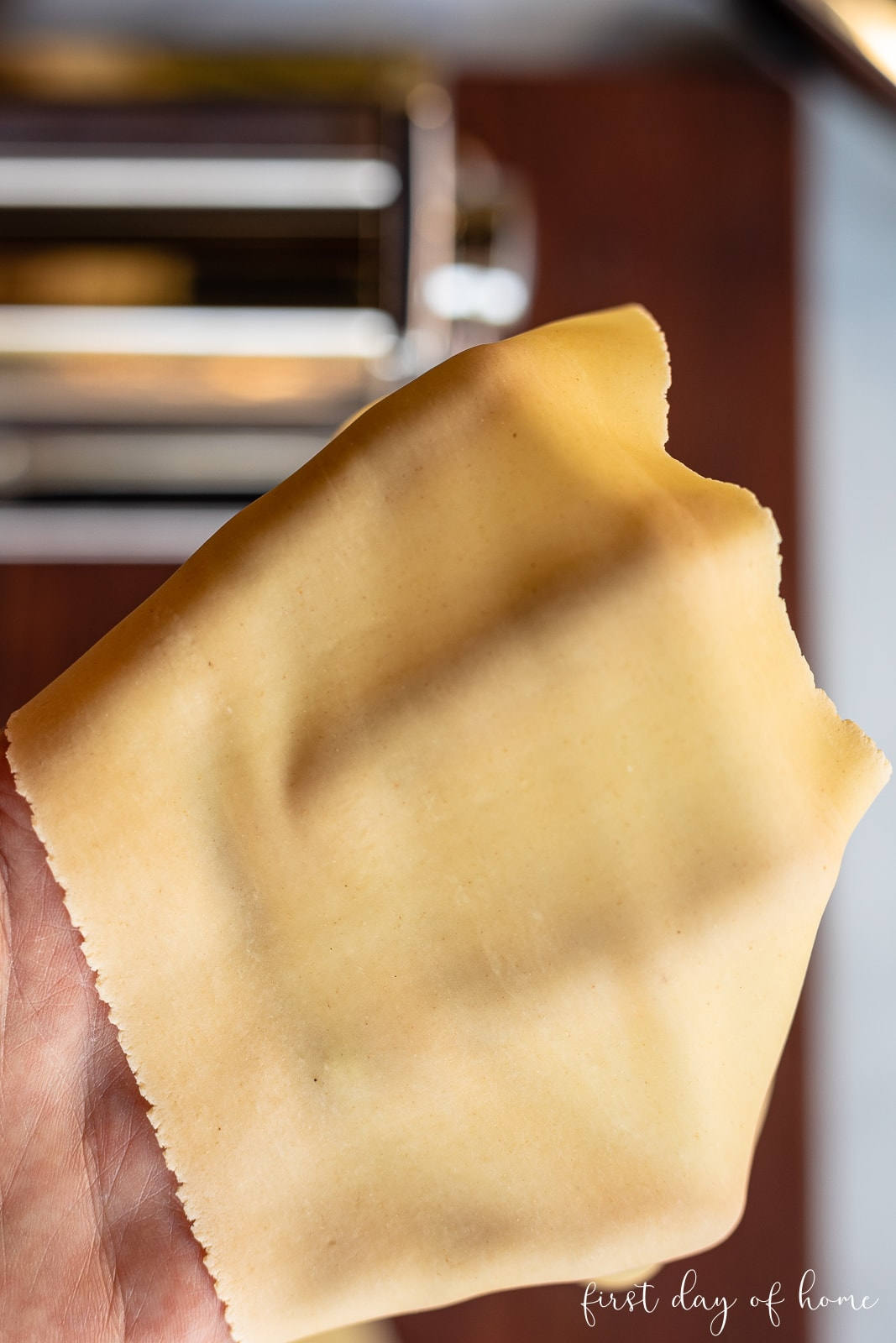 Homemade pasta before cutting into spaghetti or linguine noodles