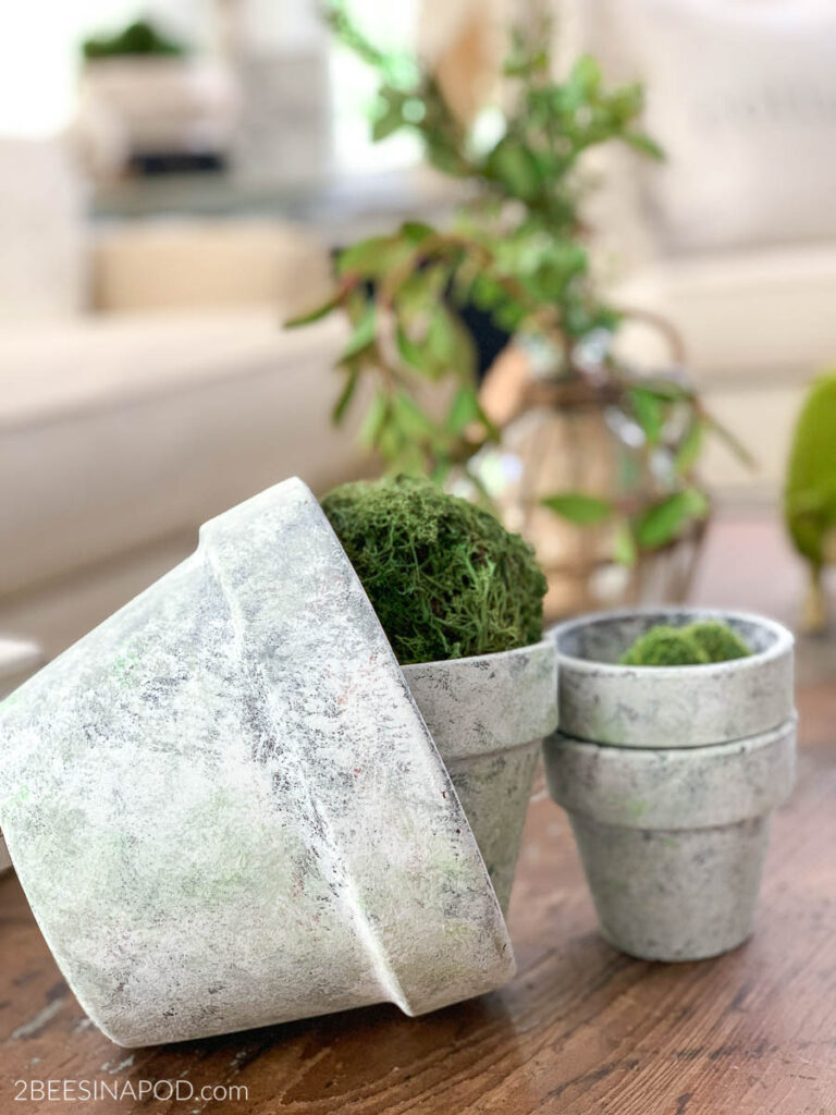 Aged terracotta pots with gray and green speckled tones