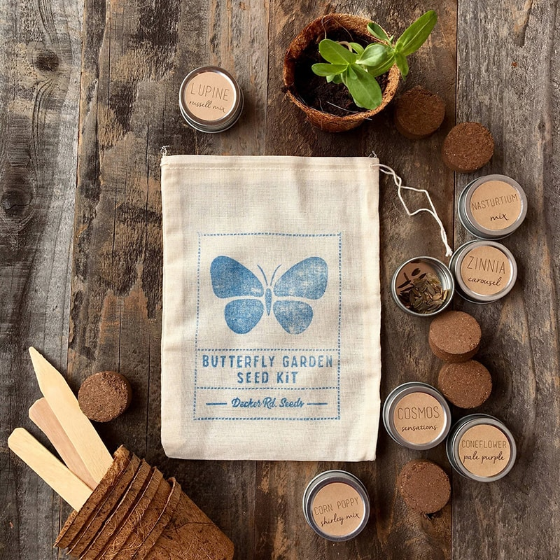 Butterfly seed kit