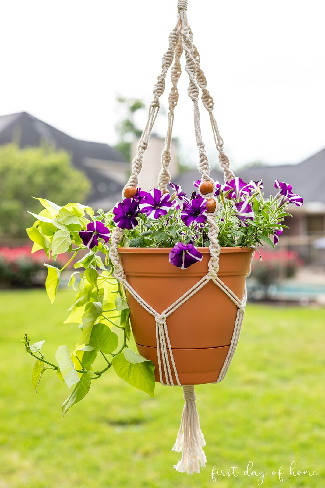 DIY macrame plant hanger holding purple and white petunias and sweet potato vine