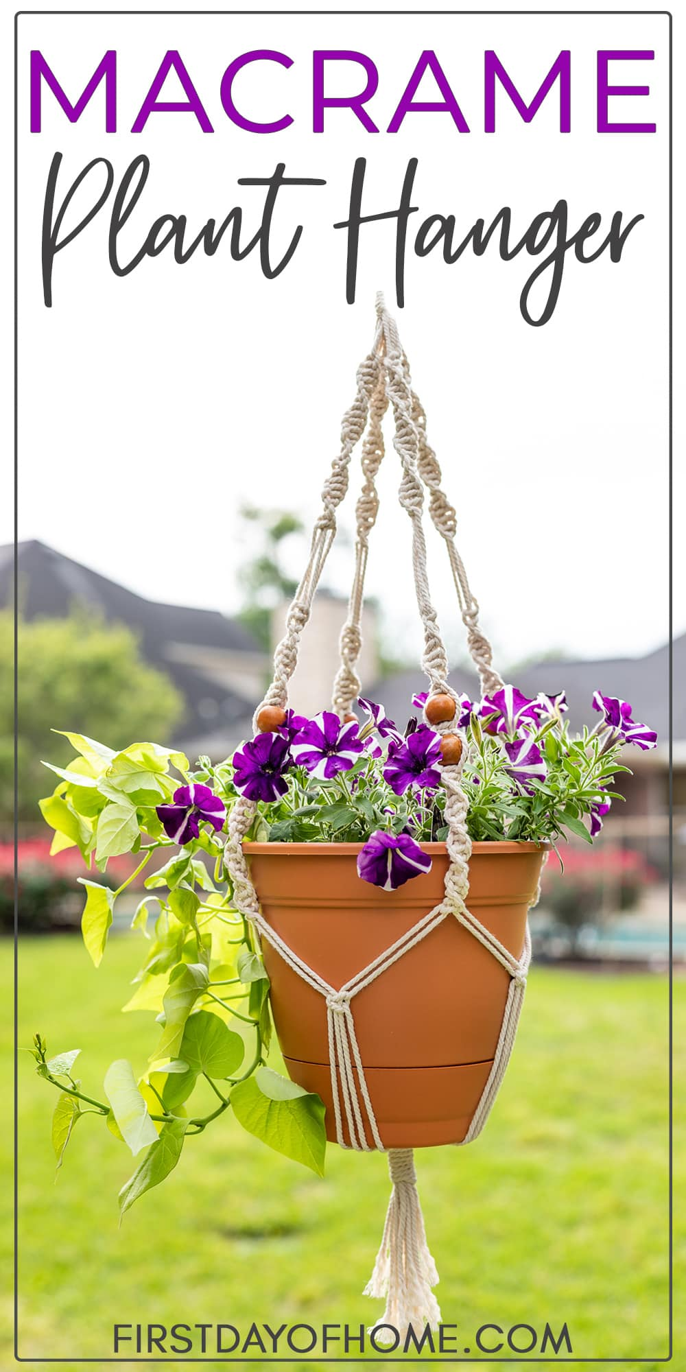 "Macrame plant hanger with petunias and sweet potato vine with text overlay reading ""Macrame Plant Hanger"""