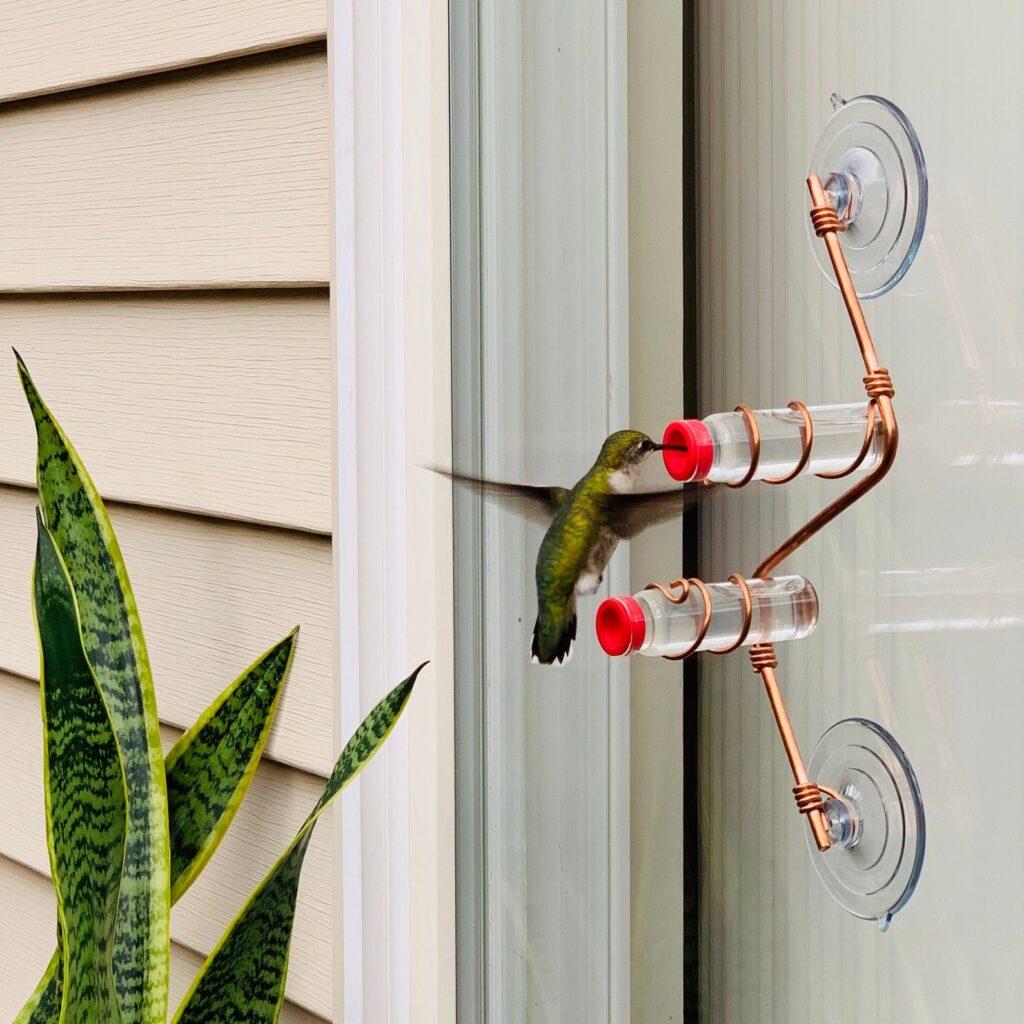 Geometric Hummingbird Feeder