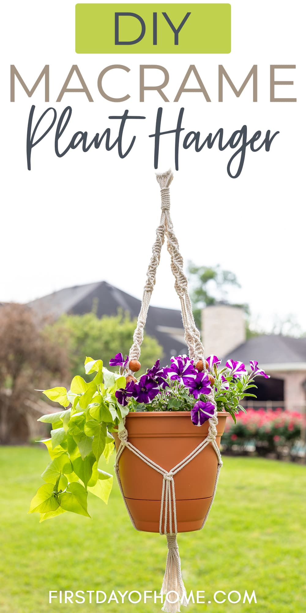 Macrame hanging basket filled with petunias and sweet potato vine