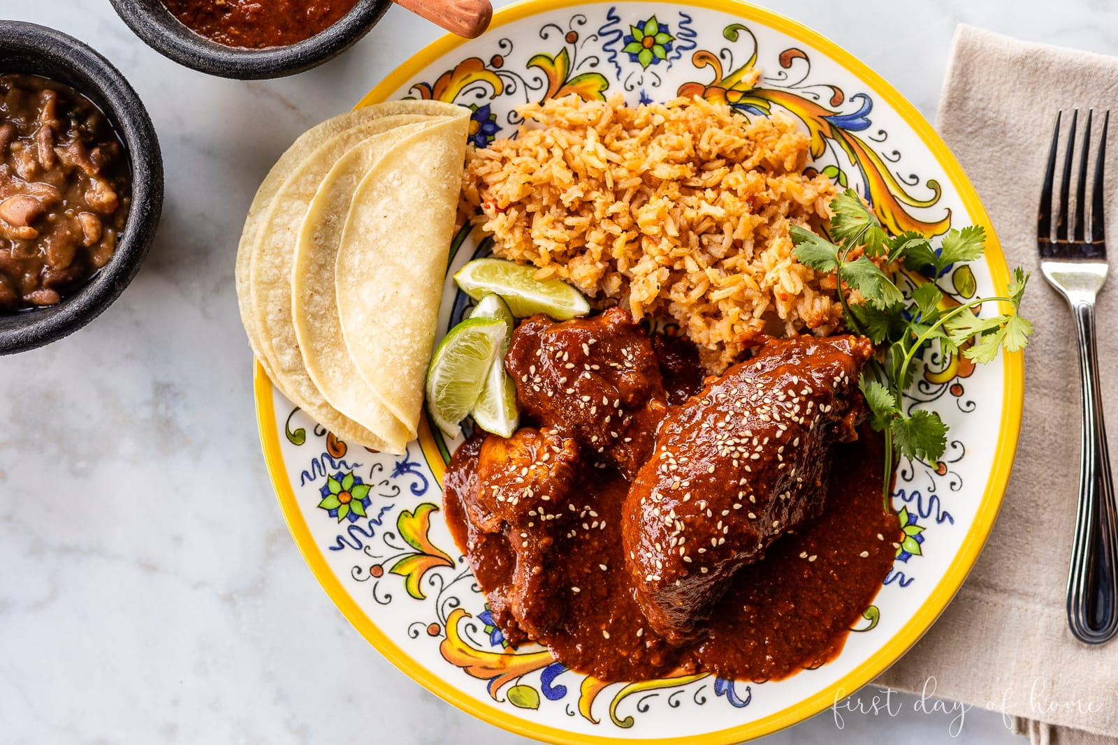 Chicken mole plate with corn tortillas and rice