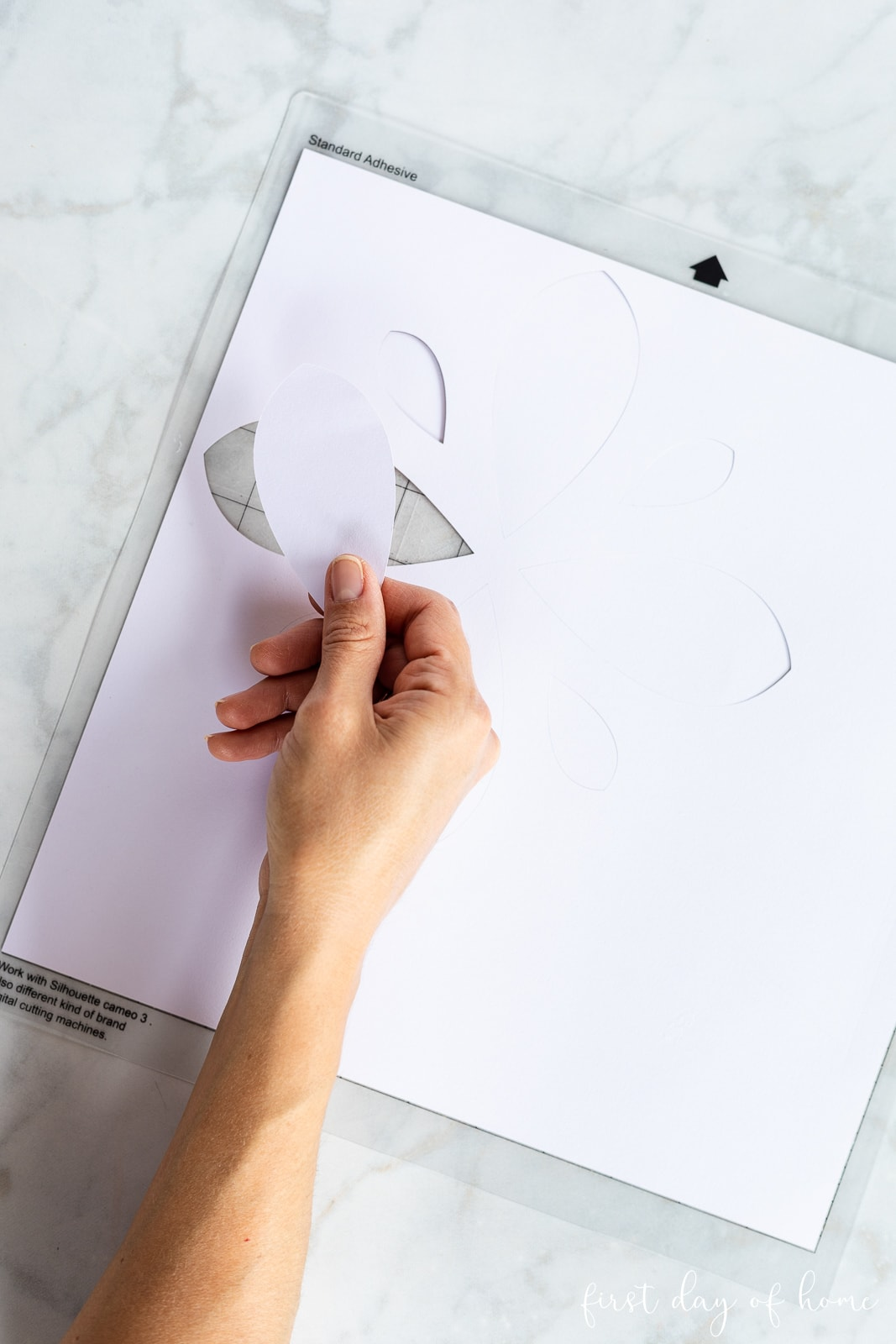 Pattern to make DIY stepping stone, cut with a Silhouette Cameo machine