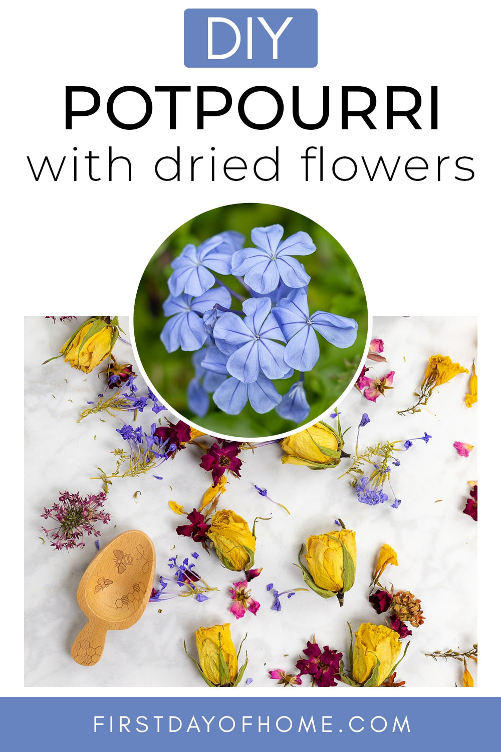 """DIY potpourri with photo of fresh plumbago flowers and text overlay reading """"DIY Potpourri with dried flowers"""""""