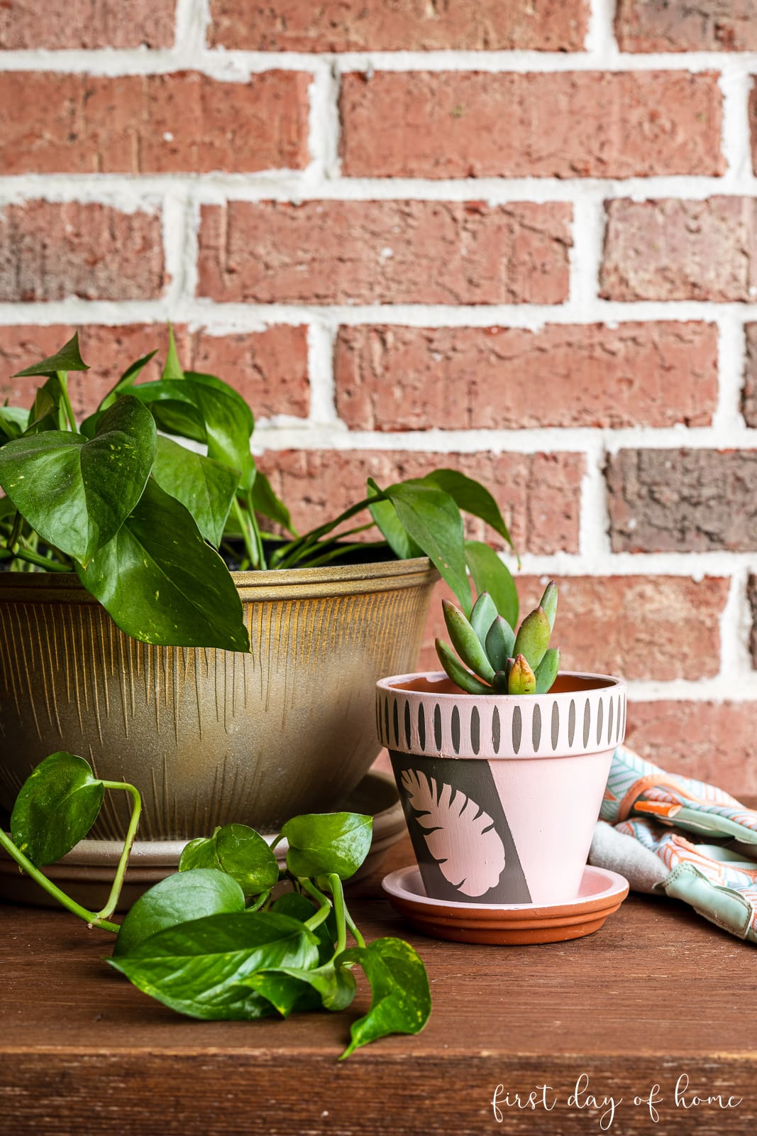 Painted flower pot with stencil design and succulent plant next to house plant