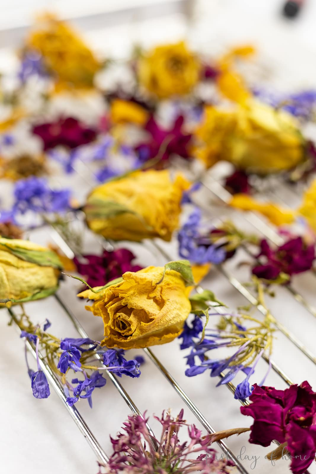 Dried flowers on cooling rack