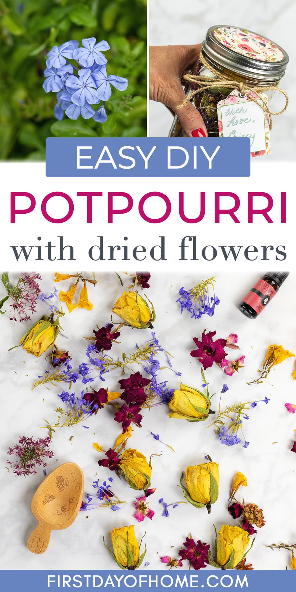 """Plumbago flowers, dried flower potpourri and mason jar filled with potpourri. Text overlay reads """"Easy DIY Potpourri with dried flowers"""""""